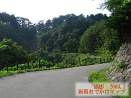 春日山城址への道