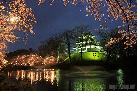 高田公園夜景