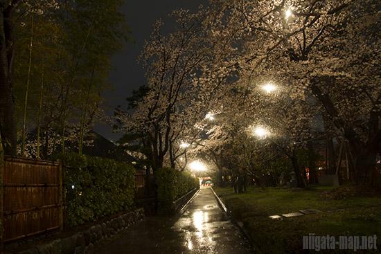 高田公園歩道