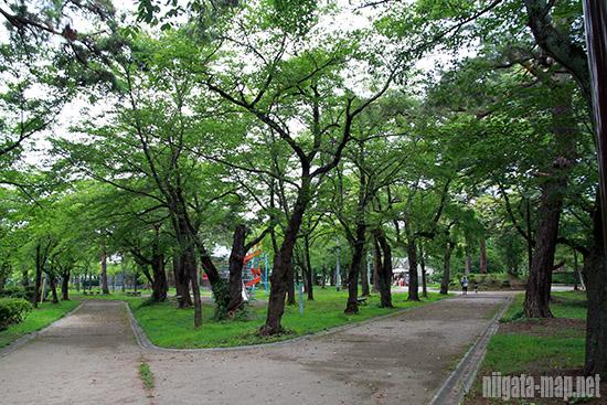 高田公園遊歩道