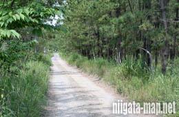 舗装前の道路