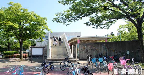 鳥屋野交通公園階段