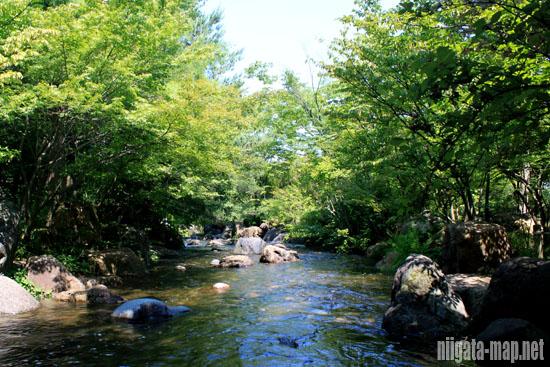 園内を流れる川