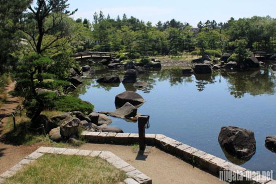 鳥屋野潟公園内の池