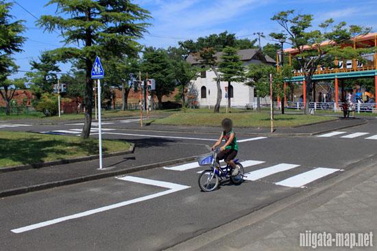 自転車でルール学習