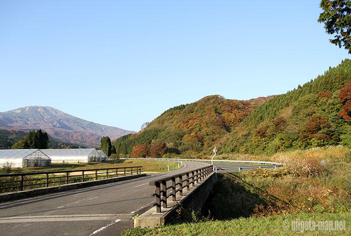 玉簾の滝周辺の紅葉