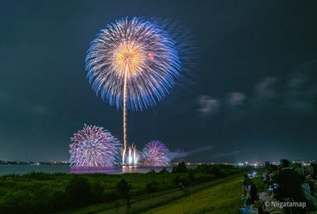 2019年の阿賀野川ござれや花火