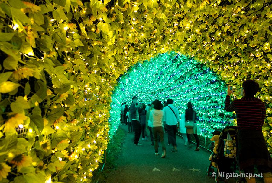 光の大トンネル
