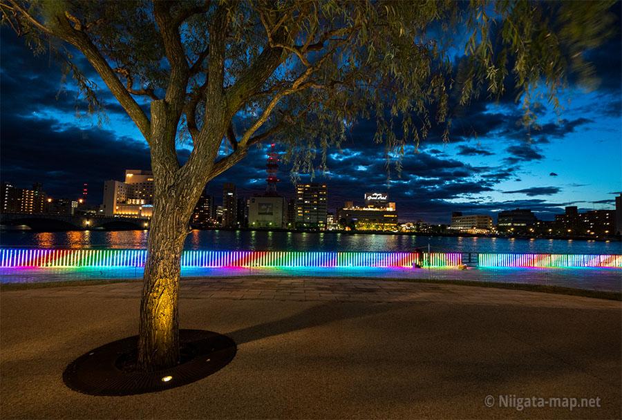 ライトアップと信濃川
