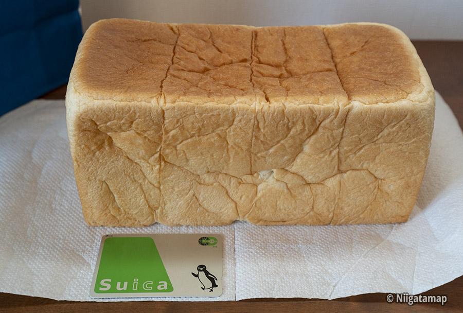 生食パンはれぱんのサイズ比較
