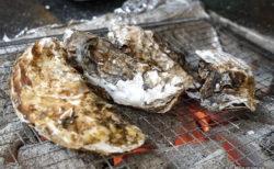 新潟市の期間限定牡蠣小屋