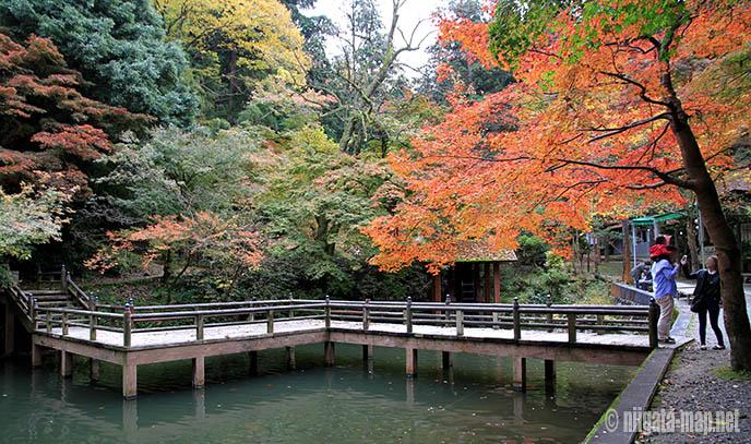 加茂山公園の紅葉と池