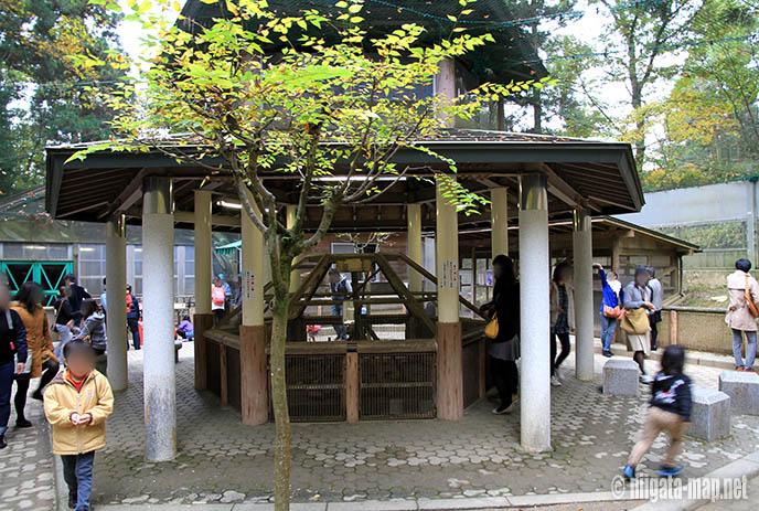 加茂山公園リス園