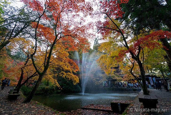 2016年加茂山公園