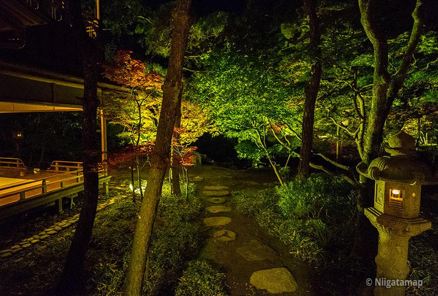 ライトアップされた斎藤邸の庭