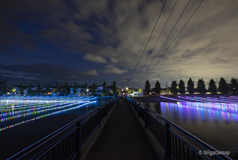 新川ほたると橋