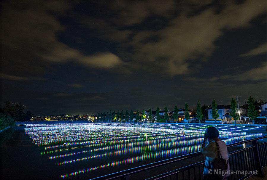 新川ほたる(LED)