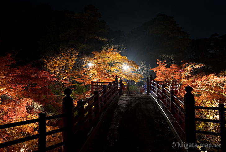 ライトアップされた観月橋